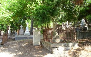 Constable Joseph Kelly grave is the single stone in the centre of the photograph. The camphor laurel tree is located in the grave to the right and is causing the stone work to move.
